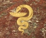 Brass snake inlaid on foyer floor