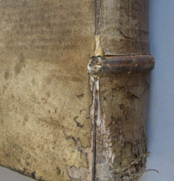 Trincavello (1585): Detail of spine showing the alum-tawed skin patch adhered over sewing support. The original color of the patch can be seen where the parchment is split along the shoulder of the spine.