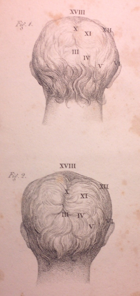 Plate from  The Physiognomical System of Gall and Spurzheim