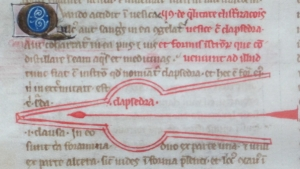 f. 23va:  sample champie initial and clapsedra