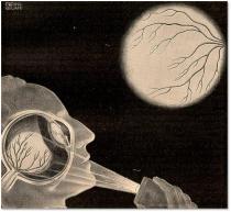 """""""The purkinje vein figure,"""" Fritz Kahn, Das Leben des Menschen 5 (1931), 61.  Artist: Alwin Freund-Beliani National Library of Medicine."""
