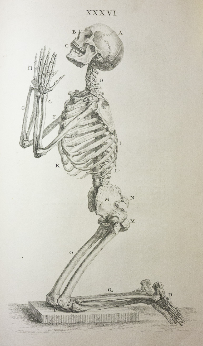 f0ca53c47 William Cheselden's Memento Mori and Skeletons at Prayer: Guest Post by  Morbid Anatomy | Books, Health and History