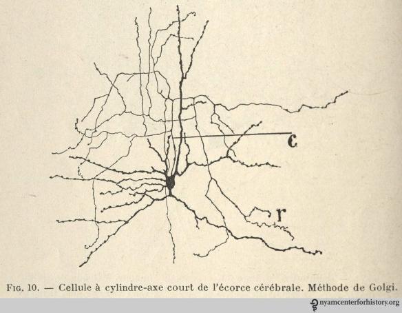 On Santiago Ram 243 N Y Cajal S 162nd Birthday Books Health