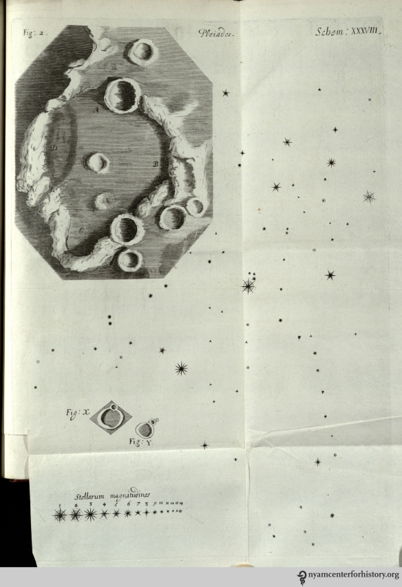 "In the last observations, Hooke turned his attention to celestial bodies. His study of the moon lead him to believe it might be covered in vegetation. He thought the hills seen in Fig. 2 ""may be covered with so thin a vegetable Coat, as we may observe the Hills with us to be, such as the short Sheep pasture which covers the Hills of Salisbury Plains."""