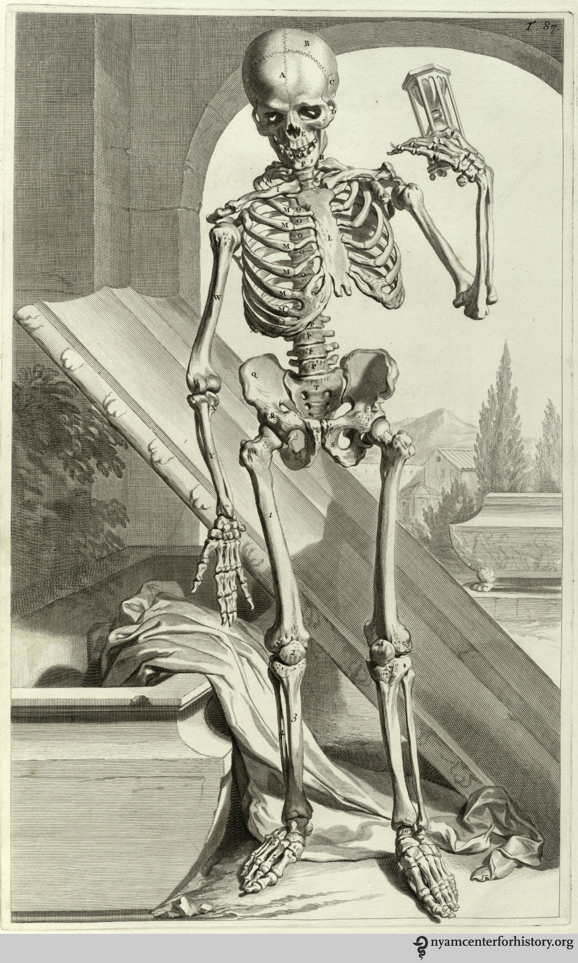 Brains, Brawn, & Beauty: Andreas Vesalius and the Art of Anatomy ...