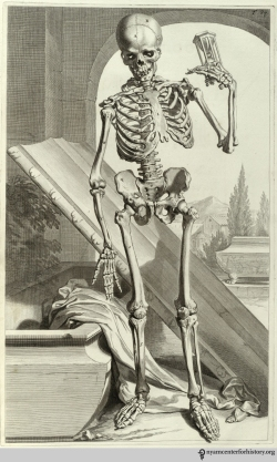 Godefridus Govert Bidloo (1644-1713). Anatomia humani corporis… Amsterdam: J. à Someren, 1685. Bidloo's Anatomia humani corporis includes 105 anatomical copperplate engravings, recognized as some of the finest illustrations of the Baroque period. Most anatomical books published in the late 16th and 17th centuries emulated the Vesalian style, with animated figures set in picturesque landscapes. Bidloo and Gerard de Lairesse, the artist, took this approach with their skeletal figures, such as this one contemplating an hourglass and the inevitability of time. The rest of the plates departed from this tradition, being realistic drawings of dissections.