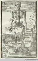 Charles (Stephanus) Estienne (1504-1564). De dissectione partium corporis humani. Paris: Simon Colinaeus, 1545. While Estienne's work was published two years after Vesalius', it should still be considered a pre-Vesalian anatomy. Estienne completed the work in 1539; it did not get printed until 1545 due to a legal dispute. Estienne's woodcuts come from several sources and vary greatly in quality, both artistically and anatomically.