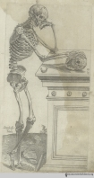 Thomas Geminus (d. 1562). Compendiosa totius anatomie delineatio… London: Thomas Geminus, 1559. Geminus' Compendiosa totius anatomie delineatio includes copies of many of Vesalius' illustrations with simplified landscapes, including the one seen here. The Compendiosa was intended as a text for British physicians to use as guidance when dissecting corpses of criminals, a practice legalized by King Henry VIII in 1540. The first edition of the book, published in Latin in 1545, gives Vesalius an acknowledgement, but the two English versions that followed—including the 1559 edition, from which this image comes—do not.