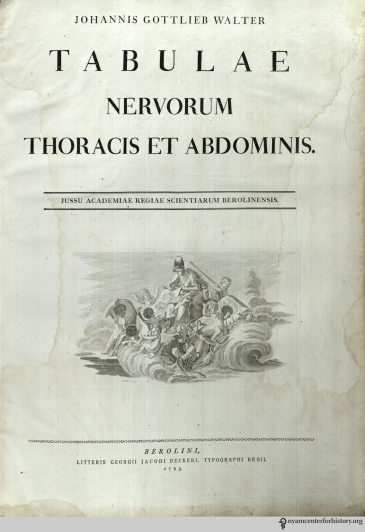The title page of Tabulae nervorum thoracis et abdominis. Click to enlarge.