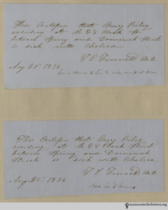 [Collection of manuscript notes, related to the 1854 cholera epidemic in New York City.]