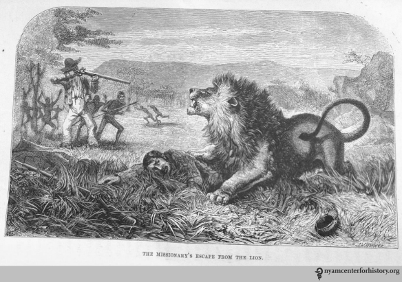 """The missionary's escape from the lion."" In Livingstone, Missionary Travels and Researches in South Africa, opposite page 13. Click to enlarge."