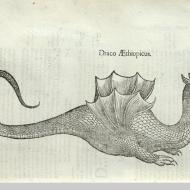 Ethiopian dragon, page 422.