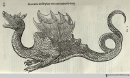 Another notable Ethiopian dragon with remarkable feathers, page 423.