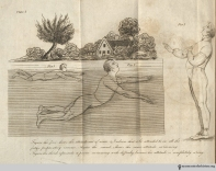"Plate 5, The Art of Swimming: ""Figure the first shows the attitude out of water, & I advise that it be attended to in all the future preparatory exercise. Figure the second shows the same attitude swimming. Figure the third represents a person swimming with difficulty because his attitude is completely wrong."""