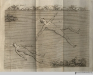"Plate 7, The Art of Swimming: ""To perform what is called winging, the arms must be extended out, until they come in a line with each other; then the hands being turned breadthways [fig 1], to lay hold of the water, are to be brought briskly down to the thighs; they must then be turned edgeways [fig 2], to lead gently out, and again breadthways, and brought down as before."""