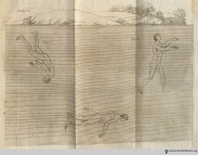 "Plate 9, The Art of Swimming: Diving. ""In order to descend in the water the head must be bent forward, so that the chin may rest upon, and compress the breast; and the back must be made round [fig 1]…To move forward, the head must be raised, and the back straightened a little [fig 2]; and to ascend, the hands must be struck out high, and brought briskly down, and the attitude must be entirely reversed; that is, the chin must be held up, and the back must be made concave [fig 3]."""
