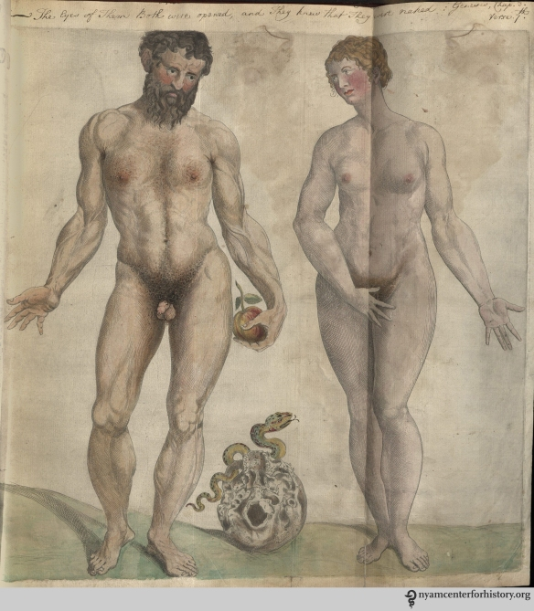 Adam and Eve in the Academy's copy of the 1559 English edition of Geminus'  Compendiosa. Click to enlarge.