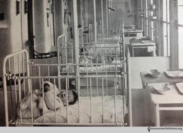 Glassed-in babies, from Annual Report 1914 Hebrew Infant Asylum of New York.