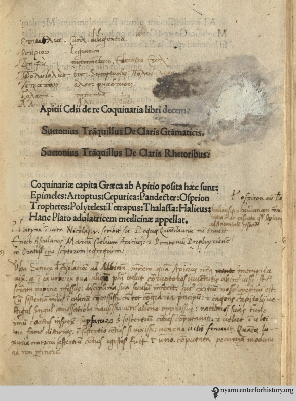 Marginalia in our 1503 printed Apicius offers Greek glosses on Latin terms.