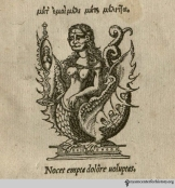 This chimera from Hippocrates' Morbis popularibus (1531) may be a bit racy, but we trust our readers to turn the inspiration into a costume appropriate for public display.