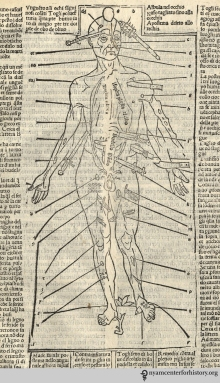 We've got ghoulish covered. Why be a zombie when you can be a wound man from Ketham's 1522 Fasciculo de medicina?