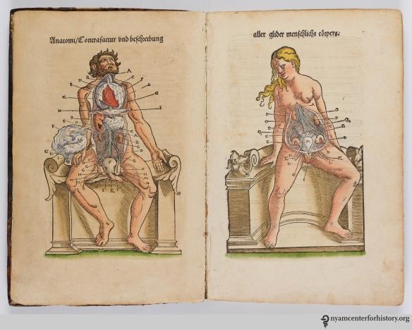 Plate 1 of Ryff's Des aller furtrefflichsten, hoechsten und adelichsten Gschoepffs aller Creaturen (1541)