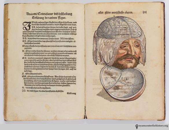 Plate 3 Ryff's Des aller furtrefflichsten, hoechsten und adelichsten Gschoepffs aller Creaturen (1541). Image originally from Dryander (1536). Click to enlarge.