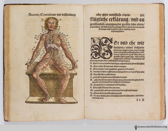 Plate 4 of Ryff's Des aller furtrefflichsten, hoechsten und adelichsten Gschoepffs aller Creaturen (1541)