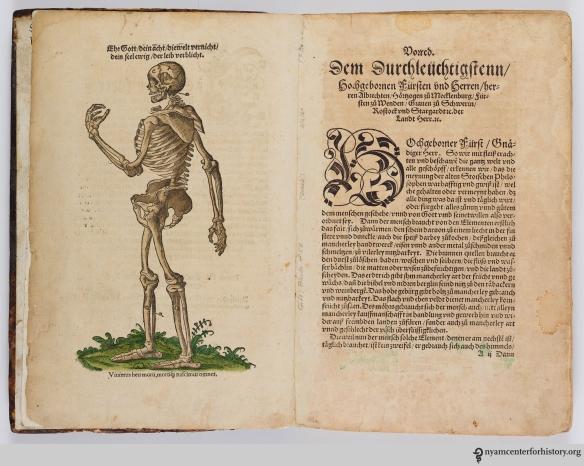 Modified Vesalian skeleton in Ryff's Des aller furtrefflichsten, hoechsten und adelichsten Gschoepffs aller Creaturen (1541)