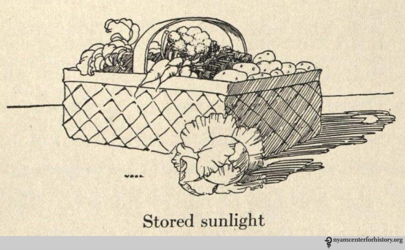 "All living things need sunlight to live, vegetables store sunlight. It is this energy ""that gives you the power to live and grow and move about."" From Hallock and Winslow, The Land of Health. New York: Charles E. Merrill, 1922."