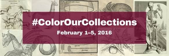 #ColorOurCollections-bannerfinal