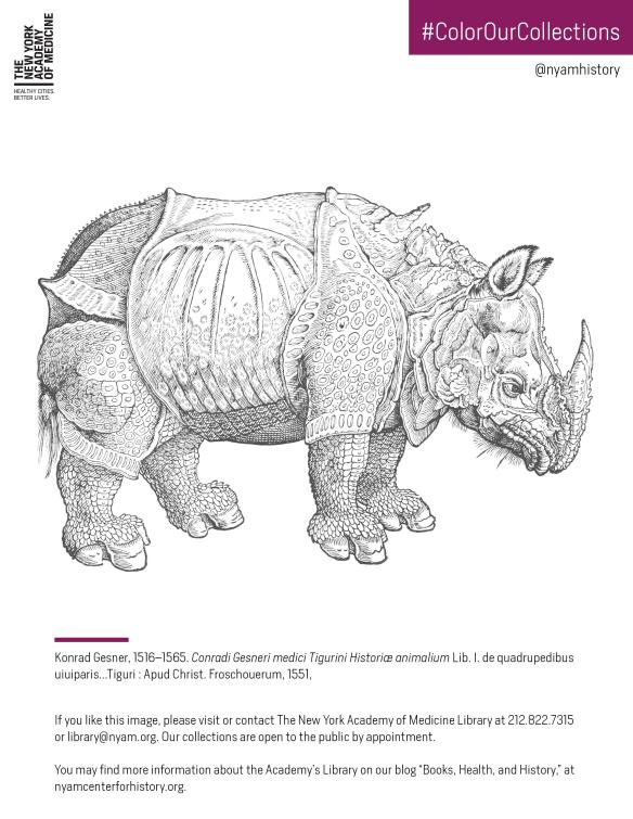 Click to download the PDF coloring sheet featuring the rhino in Gesner, Historiae Animalium, Liber I, 1551