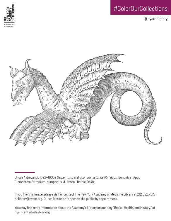 Click To Download The PDF Coloring Sheet Dragon From Ulisse Aldrovandi Serpentum Et Draconum Historiae Libri Duo 1640