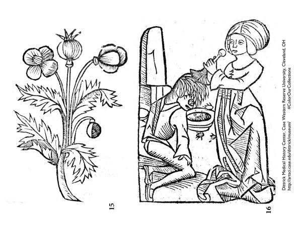 Lice removal. 1491. Hortus sanitatis. Mainz, Jabob Meydenbach. Courtesy of the Dittrick Museum.