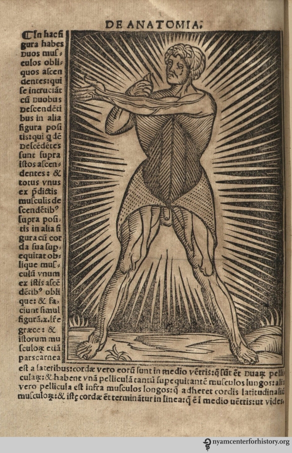 Figure in Berengario, Anatomia Carpi Isagoge breves, 1535.