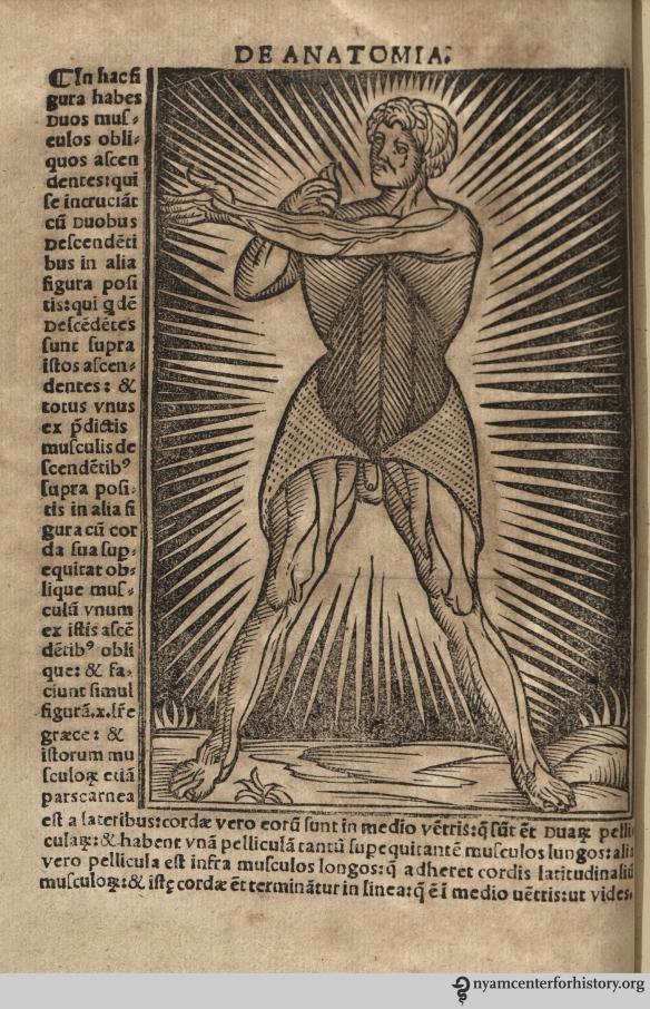 Figure in Berengario, Anatomia Carpi Isagoge breves, 1535.