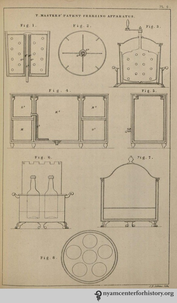 Plate 6 published in Thomas Masters' The Ice Book, 1844.
