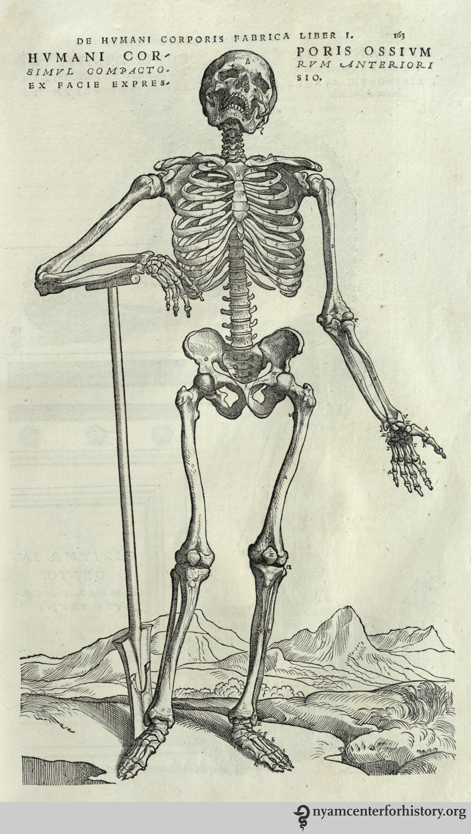 Andreas Vesalius Books Health And History