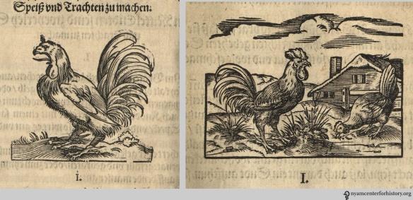 rumpolt-roosters_1581_watermarked