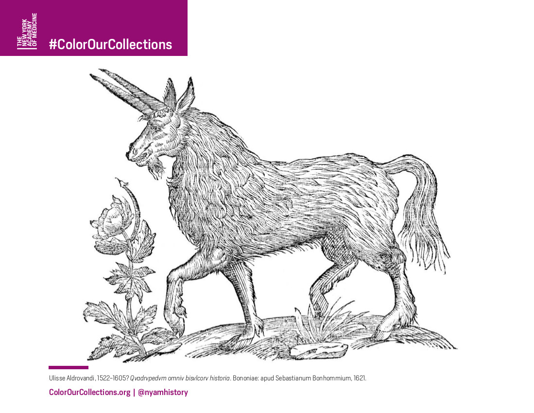 If You Like Aldrovandis Majestic Beasts Youll Love The Following Coloring Pages From Our Participating Institutions