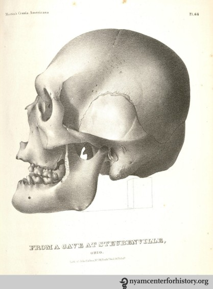morton_crania-americana_1889_watermark
