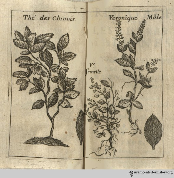 andry_frontispiece_1710_watermark