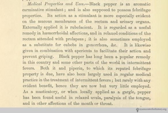 Black pepper medicinal properties_Bentley_watermarked